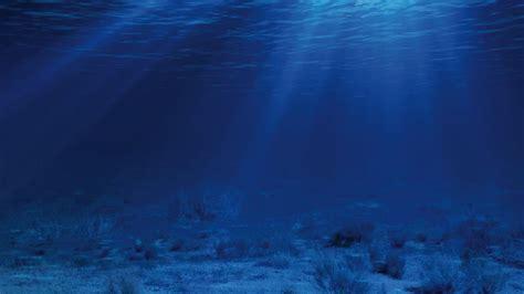 Sea Floor by We Need Phosphate To Grow Food But Should We Be Digging
