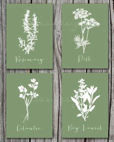 printable dining room art kitchen herbs illustration printable art sketchbook