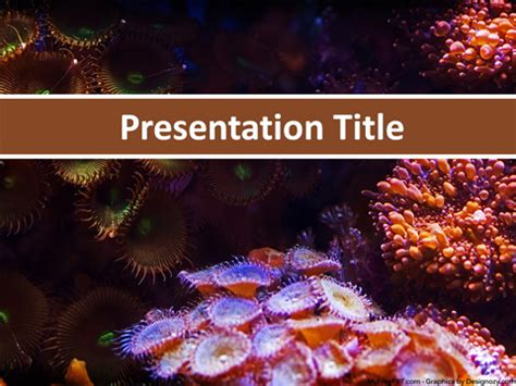 Free Aquarium Powerpoint Templates Myfreeppt Com Coral Reef Powerpoint Template Free
