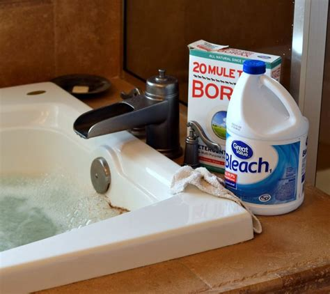 best way to clean bathtub jets 25 best ideas about clean jetted tub on pinterest