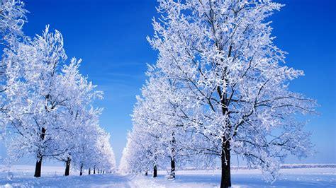 google images winter scenes google winter scenes wallpaper wallpapersafari