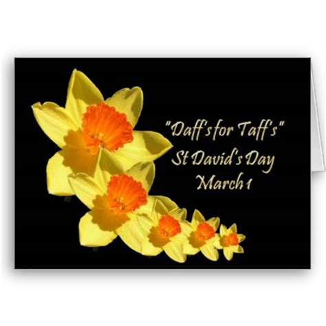 s day 2012 the royal hotel cardiff happy st david s day 2012