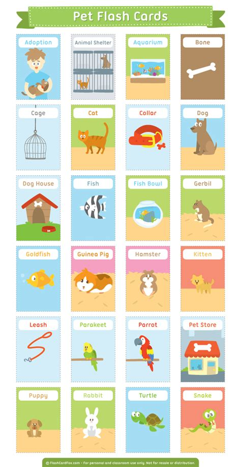 flash card maker dictionary free printable pet flash cards download them in pdf