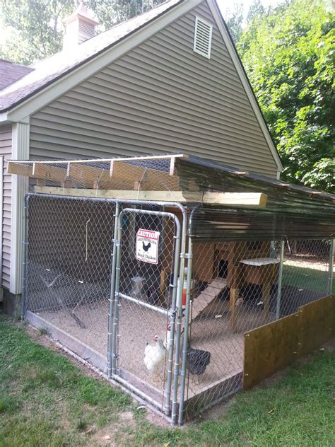 Backyard Chicken Coops Review Kennel Coops Page 9