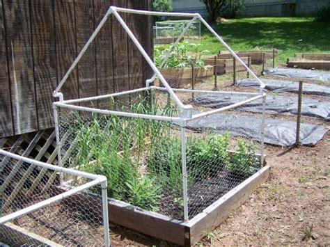 chicken wire headboard building garden fence boxes