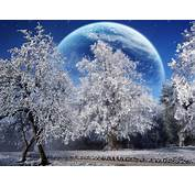 Winter Snow Full Moon High Resolution Hd Wallpapers
