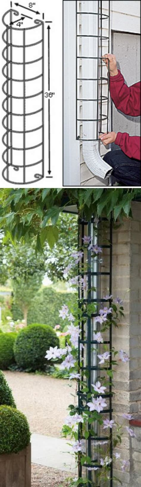 Downspout Trellis 20 Awesome Diy Garden Trellis Projects Hative