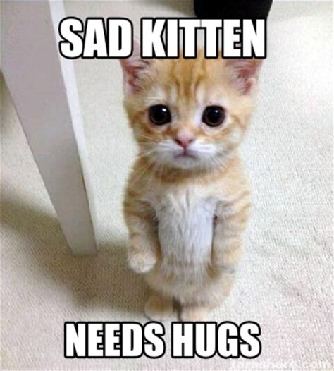 Meme Generator Kitten - meme creator sad kitten needs hugs meme generator at