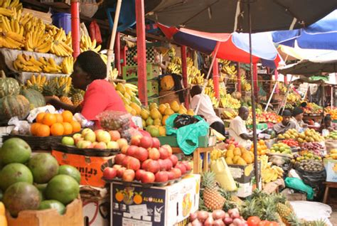 d r fruit market scientists embrace call for new approach in