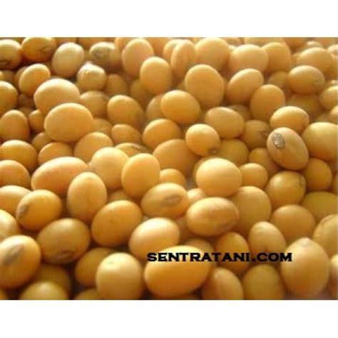 Planter Bag 20 Liter Hitam T1310 2 jual benih kedelai anjasmoro