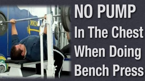 whats a bench whats a good bench press weight pornici me