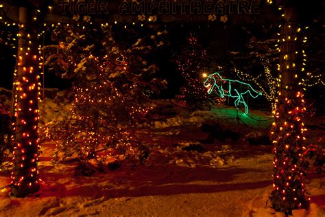 Zoo Lights Christopher Martin Photography Calgary Zoo Light