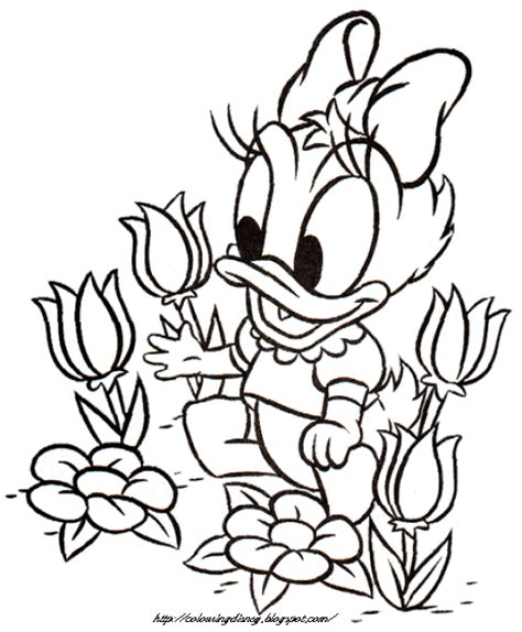 daisy mickey mouse coloring pages donald daisy duck baby mickey baby minnie and baby