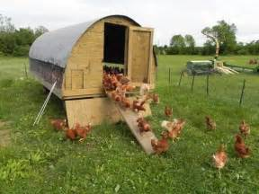 Backyard Building Ideas Chicken Coop Ideas Designs And Layouts For Your Backyard