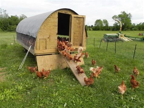hen house plans chicken coop ideas designs and layouts for your backyard chickens removeandreplace com