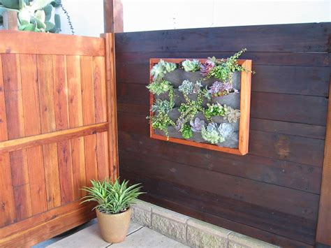 plants on walls vertical garden systems wood framed