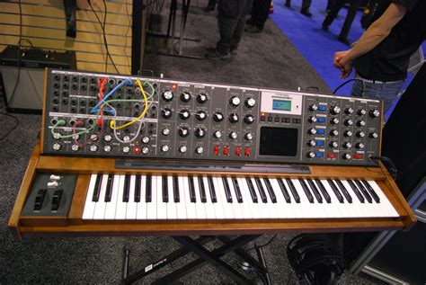 Softcase Ekonomis Moog Minimoog Voyager Xl poll what is something that you just can t resist