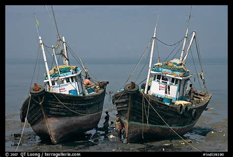 fishing boat rate in india picture photo boats at low tide mumbai maharashtra india