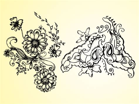 drawn to nature a nature floral drawing