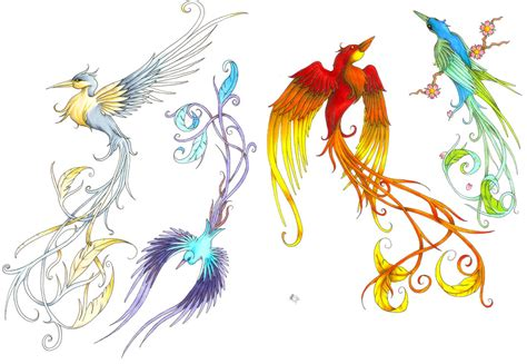 bird of paradise tattoo designs bird of paradise sles by danielround on deviantart