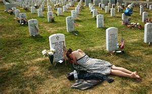 state with most dog owners 2016 wife at grave of iraq war casualty conscious lifestyles