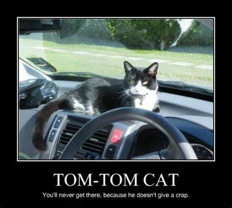 Tomtom Meme - tom tom catyou ll never get there because he doesn t give