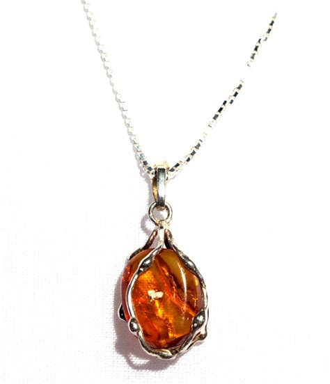 African Home Decor Catalog Amnh Shop Amber Insect Necklace
