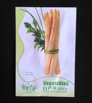 Bibit Asparagus benih retail asia white asparagus 20 biji jual tanaman