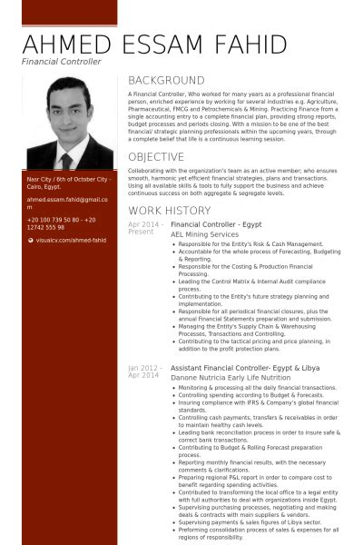 financial controller resume samples visualcv resume