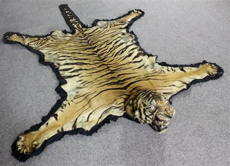 the tiger skin rug an early 20th century indian tiger skin rug mounted by ingen and ingen of mysore the moun