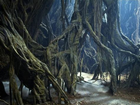 images of dagobah wookieepedia the wars wiki