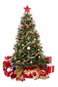 weihnachten so bleibt der christbaum frisch mein bau