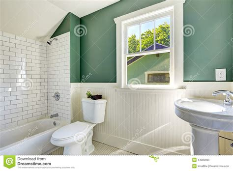 bathroom with green walls download soft green bathroom interior design share the