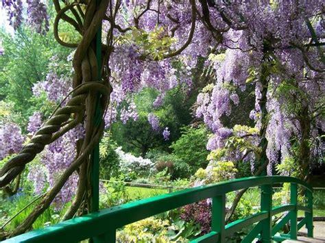 abbellire un giardino idee per il giardino crea giardino come progettare