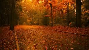 fall wallpaper 6938566