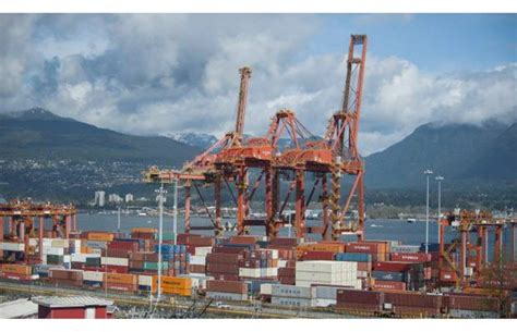 Hells Criminal Record Pipeline How Crime Groups Infiltrate Vancouver S Docks