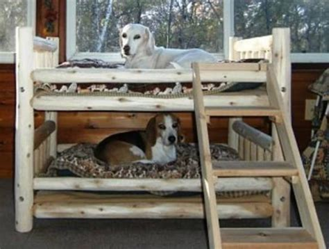 Bunk Bed For Dogs Bunk Beds Best Ideas Easy