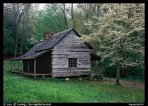 Log Cabin Smoky Mountains by Picture Photo Noah Ogle Log Cabin In The Tennessee Great Smoky Mountains National Park
