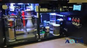 meerwasseraquarium led beleuchtung erfahrung die steuerung l uft vollautomatisch ber einen aquatronica