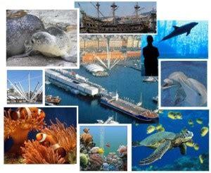 quanto costa l ingresso all acquario di genova l acquario di genova taglia il traguardo dei 20 milioni di
