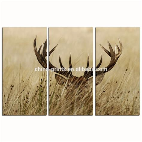2018 stag wall wall ideas