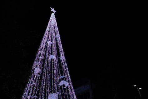 tree lights australia canberra breaks world record for lights strung on a