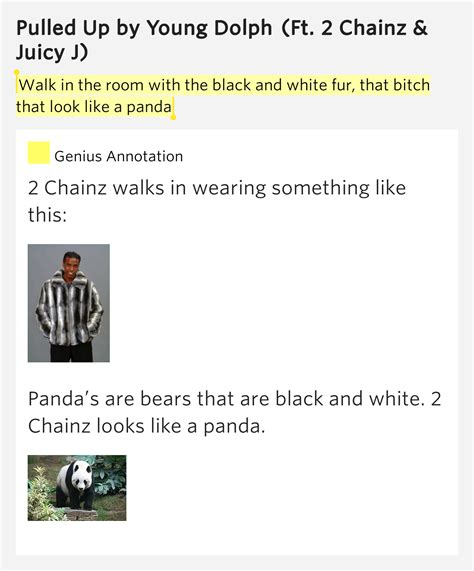 white room lyrics meaning walk in the room with the black and white fur that that look like a panda pulled up