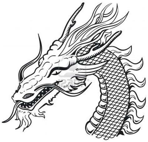 dragon head tattoo design how to draw dragons skin pencil drawing collection