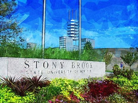 Stony Brook Mba by 50 Best Master S Degrees In Nursing For 2017