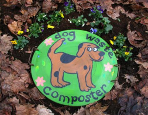 what to do when dog poops in the house what to do with dog poop in backyard 28 images beautiful what to do with dog poop