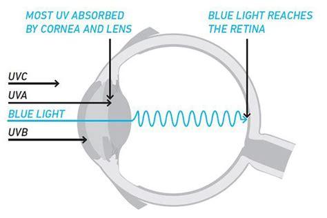 Wellness Education Optix Eye Care