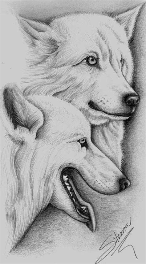imagenes hechas a lapiz de animales bocetos a lapiz blogartistico