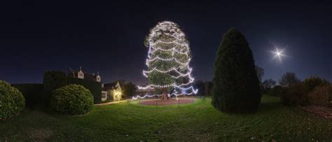 panoramio photo of christmas tree at wakehurst place
