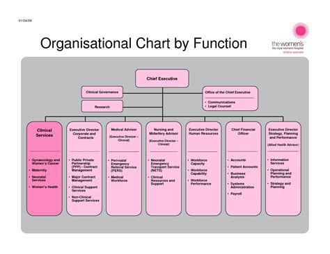 7 Best Images Of Functional Organizational Chart Exles Non Profit Organizational Chart Sle Organization Chart Template With Function